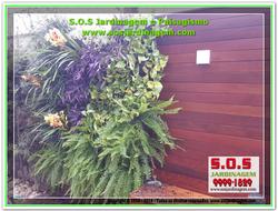 S.O.S Jardinagem 20180802_161107