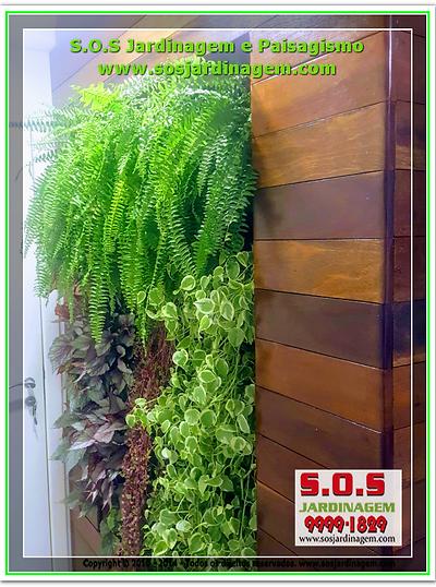 Jardim Vertical / Parede Verde-20_06_2018 Projeto S.O.S Jardinagem e Paisagismo em curitiba .jpg