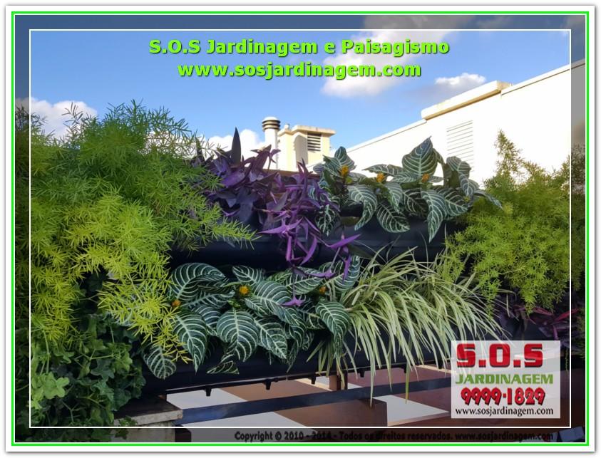 S.O.S Jardinagem 20170624_161915