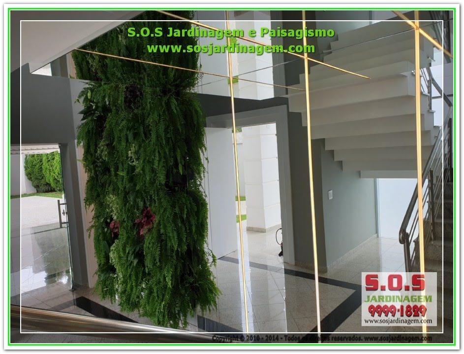 #Jardim Vertical #Parede Verde #Cliente ( Carolina)20200116_142957