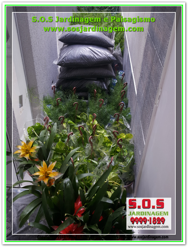 S.O.S Jardinagem 20180721_131218