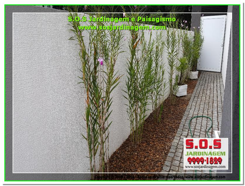 S.O.S Jardinagem e Paisagismo 2016-05-13_00059 S.O.S Jardinagem e Paisagismo.png