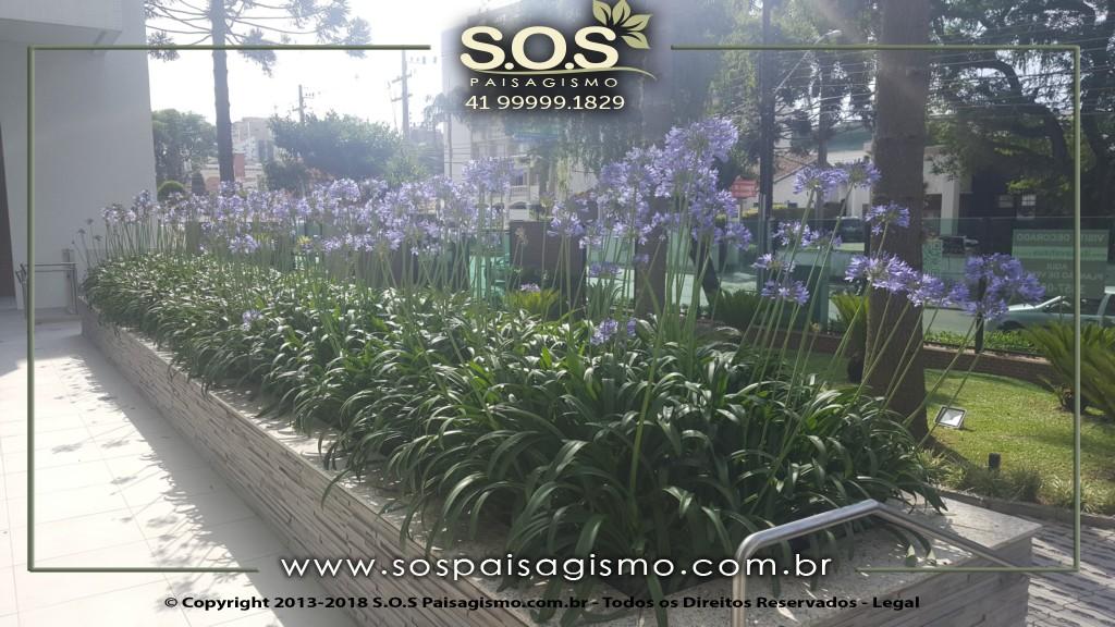 Flores e Plantas para condominios