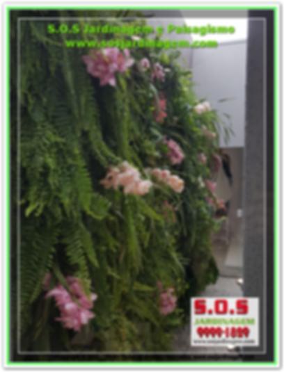 S.O.S Jardinagem 20180731_111832.PNG