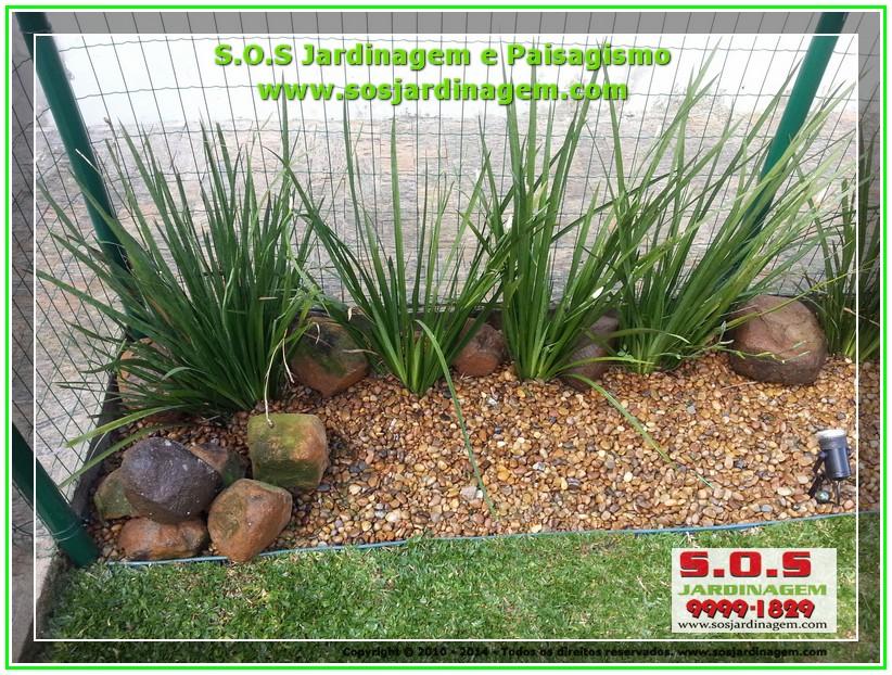2014-08-14_00023 S.O.S Jardinagem e Paisagismo.jpg