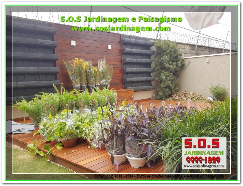 S.O.S Jardinagem 20180802_144711