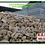 Thumbnail: Pedras Saco 30 KG