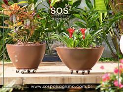Vasos e Plantas de Paisagismo