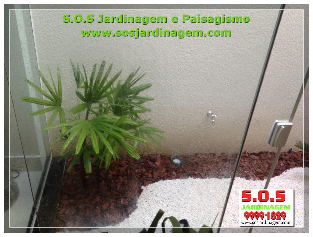 Paisagismo interno IMG_3170.jpg