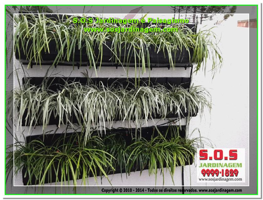 S.O.S Jardinagem e Paisagismo 2016-05-13_00084 S.O.S Jardinagem e Paisagismo.png