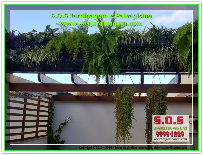 S.O.S Jardinagem 20170624_164218