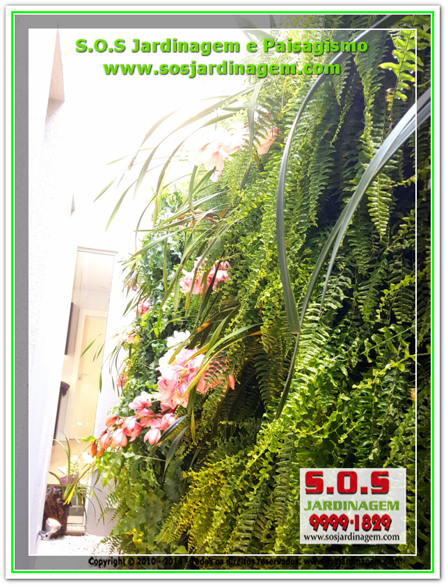 Jardim Vertical 20180731_114156