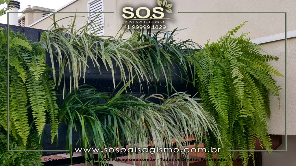 Parede Verde em Curitiba