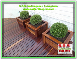DSCN2570-04_09_2015-9116S.O.S Jardinagem.jpg