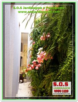 Jardim Vertical 20180731_114152