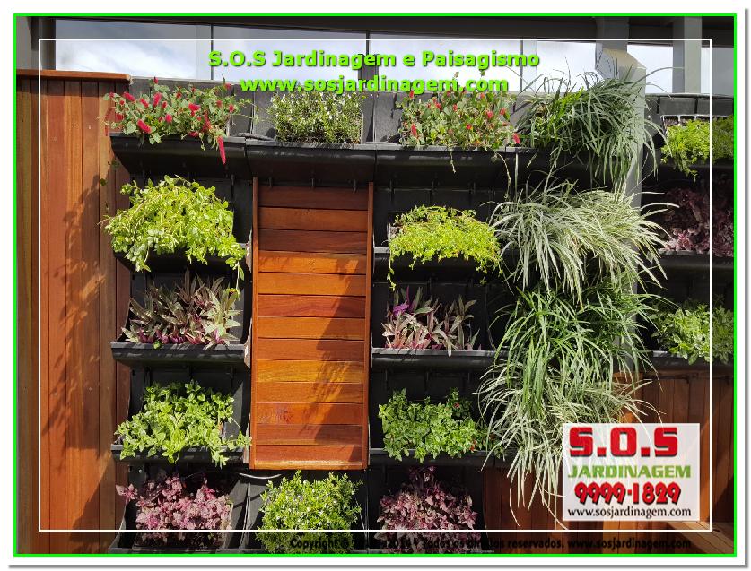 S.O.S Jardinagem e Paisagismo 2016-02-26_00251 S.O.S Jardinagem e Paisagismo.png