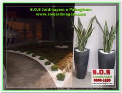 S.O.S Jardinagem 20180803_185939