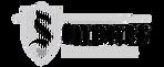 Stunner logo / Loric Mathez batteur Suisse / Swiss drummer