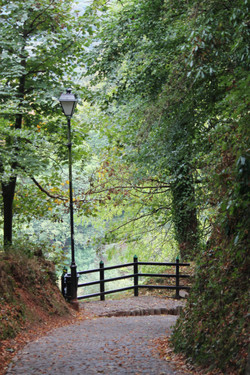 The country paths