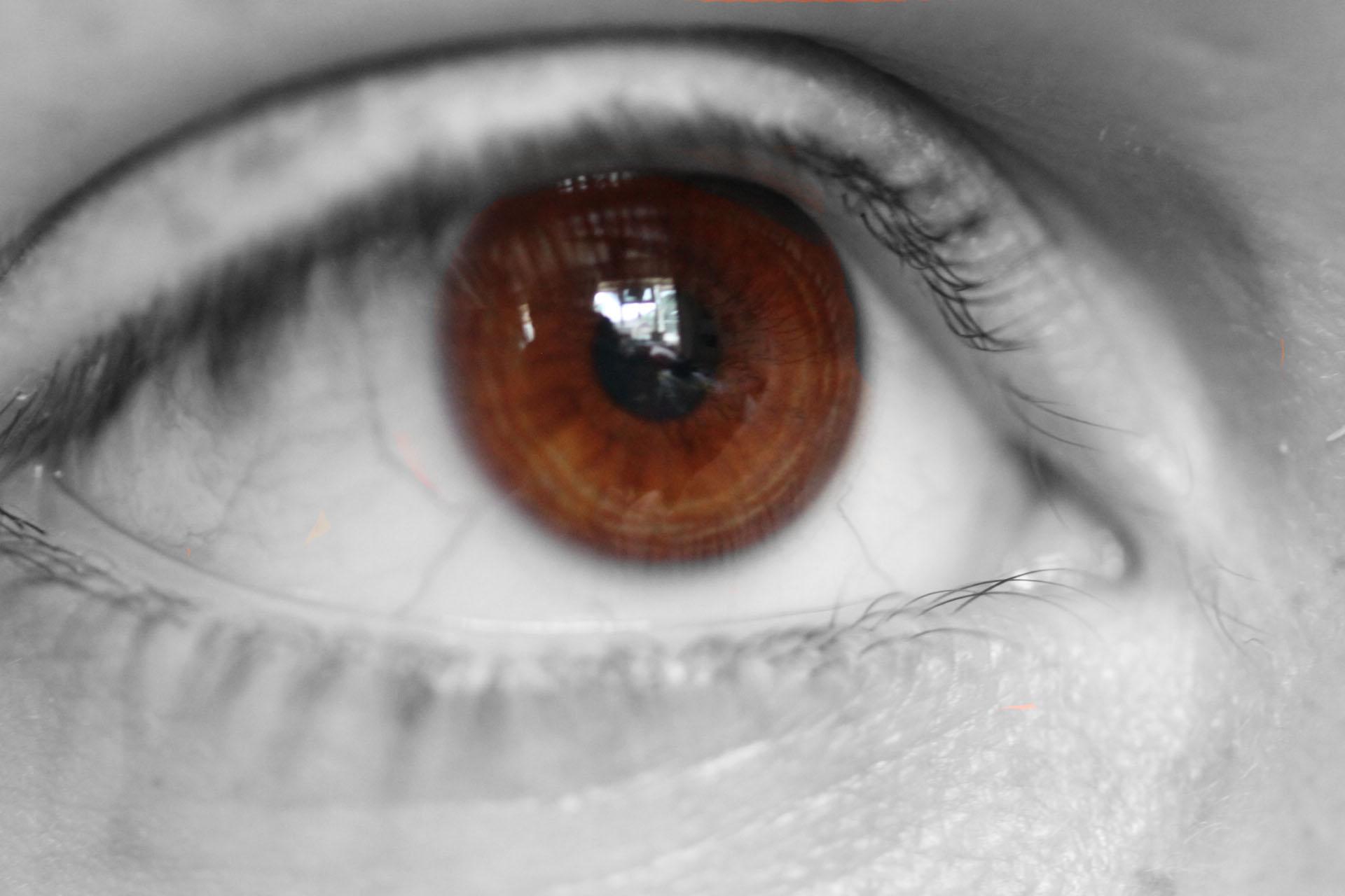 an eye of wonder