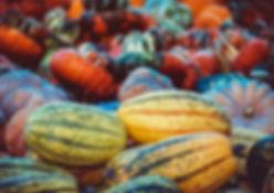 pumpkin-3759587.jpg