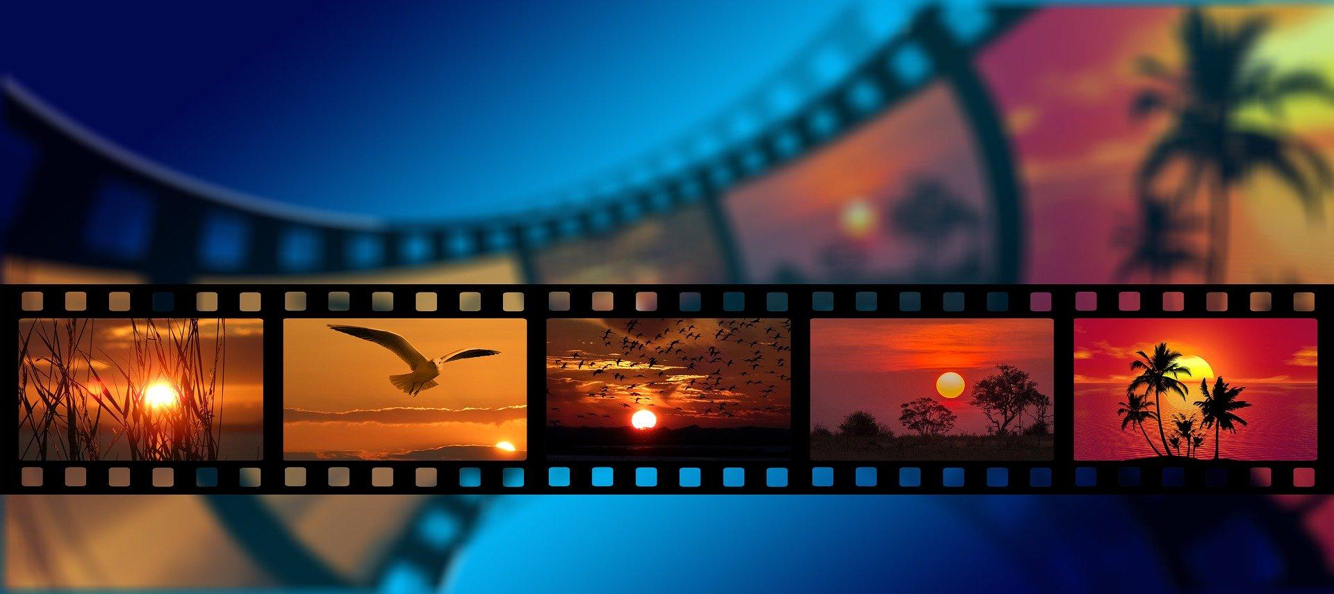 Accès libre au catalogue de films de la cinémathèque de Milan. Pour y accéder, il suffit simplement