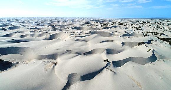 Baja California Dunes by Talin Wayrynen
