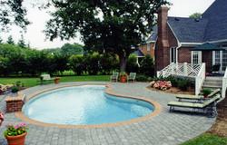 Humback Kidney liner pool 4