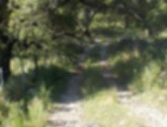 terreno_23.jpg