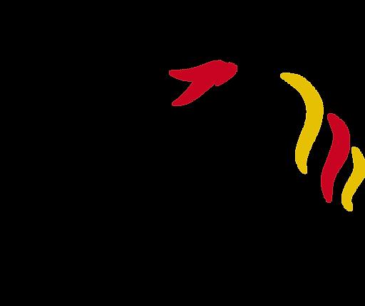 COLOR logo (2).png