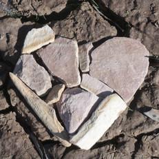 Heart in Nature.jpg