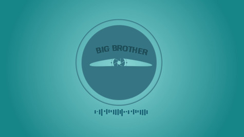 2D: Big Brother is Watching you!