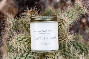 Cactus photo.jpg