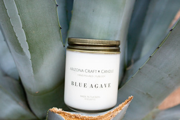 Blue Agave photo.jpg