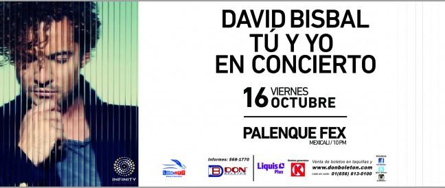 """DAVID BISBAL GITA """"TU Y YO""""   16 OCTUBRE"""