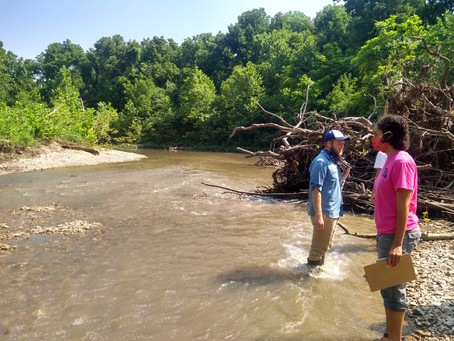 Making the Grade: How healthy is the Blue River?