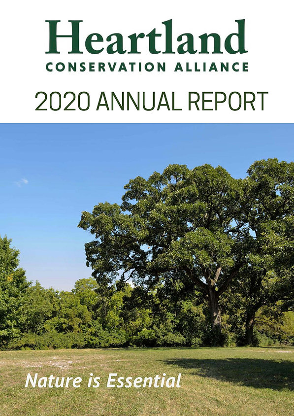 2020 HCA Annual Report_UPDATED_3.30.21_r