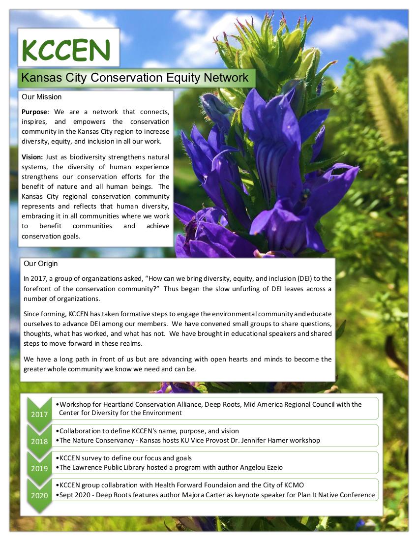 KCCEN 1-Page Statement Flyer (2).tiff