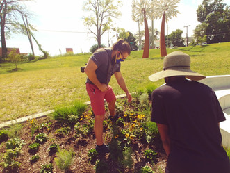 Spring programs encourage stewardship and revitalization
