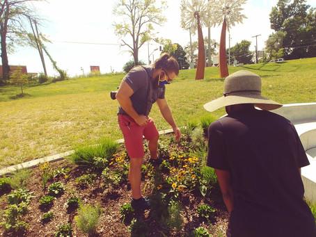 Spring programs encourage stewardship and revitalization