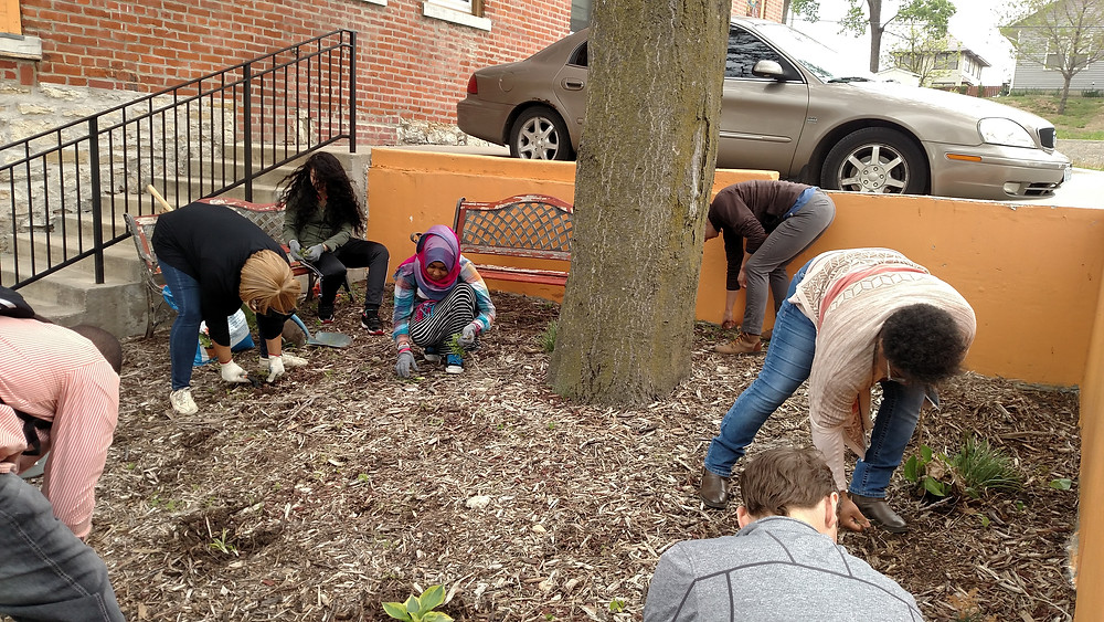 Stewards-in-training pulled weeds and planted flowers in an urban garden in April 2016
