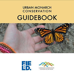 Monarch Conservation Guide.jpg