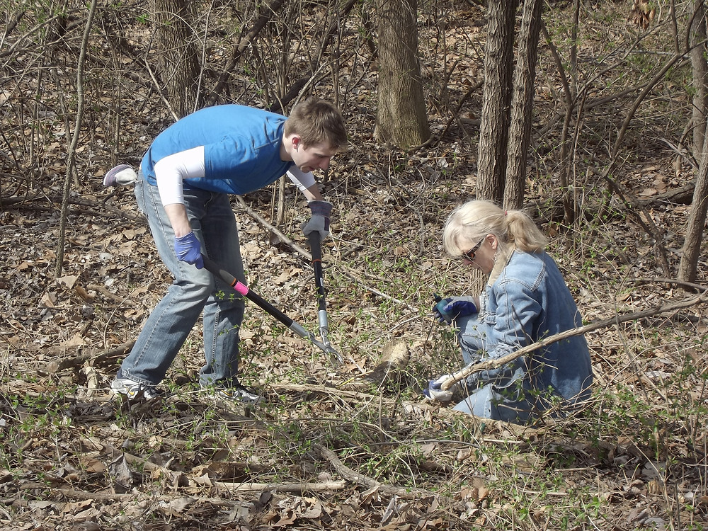 Connie working with a young conservationist to remove honeysuckle along the Blue River