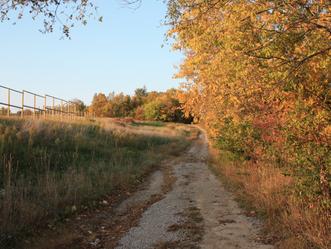 Municipal Farm Work Day