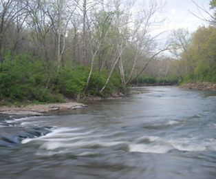 Restore Blue River