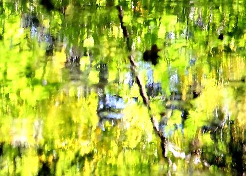 Reflections 1, 2017, 22 x 30, A4.jpg