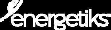 Energetiks-logotype-white-no-tagline.png