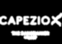 Capezio dancewear.png