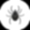Дезинсекция клещей, дезинсекиця, дезинсекция во Владимире, дезинсекция помещений, дезинсекция дезинфекця дератизация