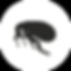 Дезинсекция блох, дезинсекция во Владимире, дезинсекция, дезинсекция помещений, дезинсекция квартиры, дезинсекция дезинфекция дератзация
